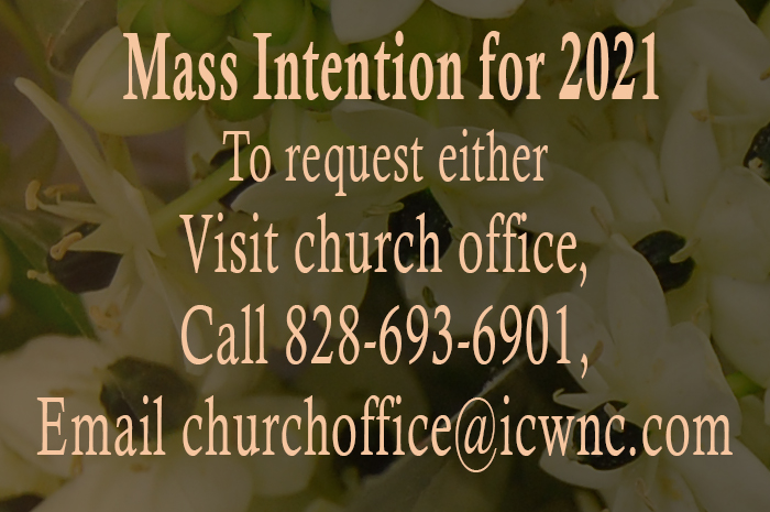 mass-intention